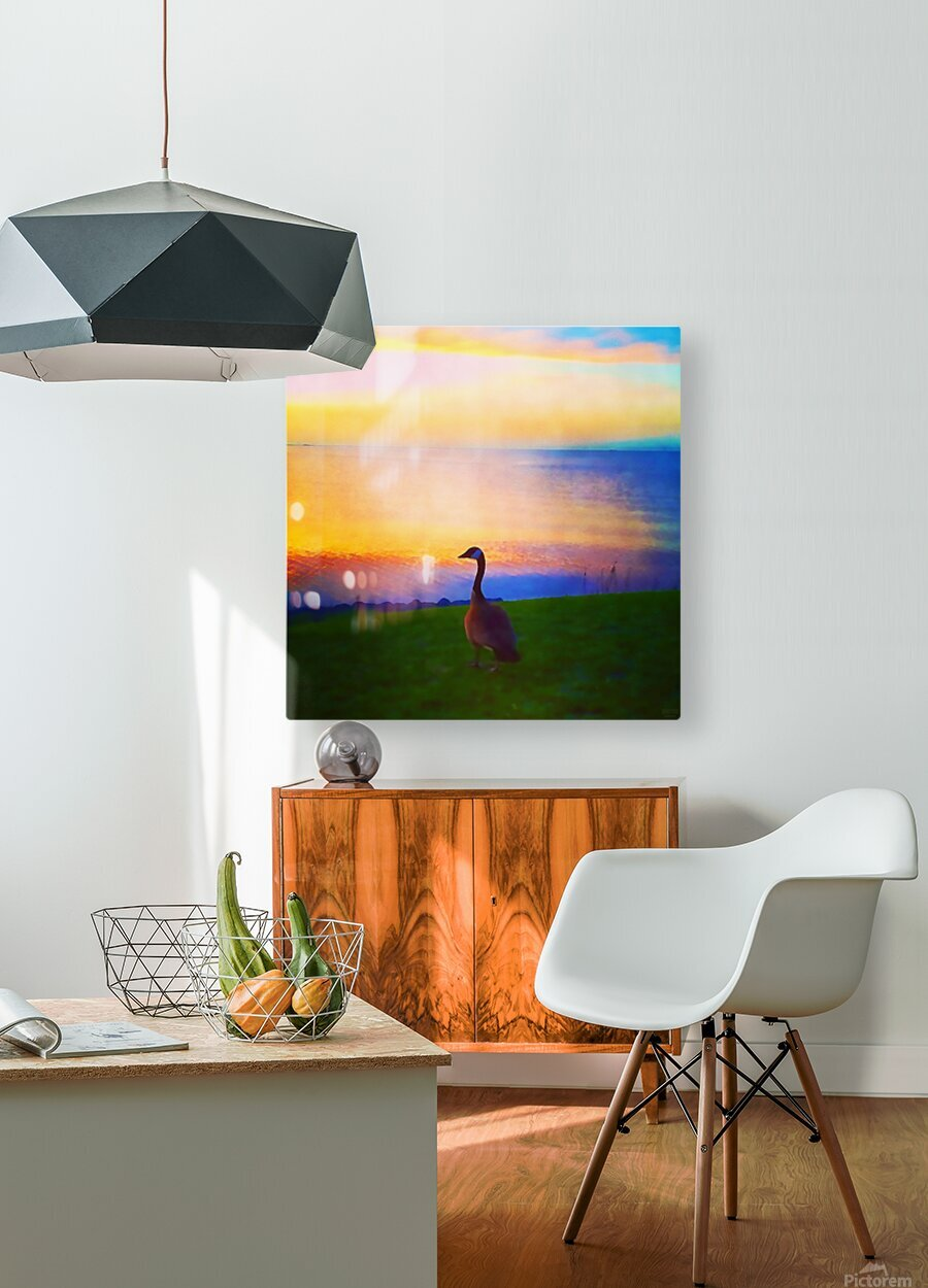 looking out  HD Metal print with Floating Frame on Back