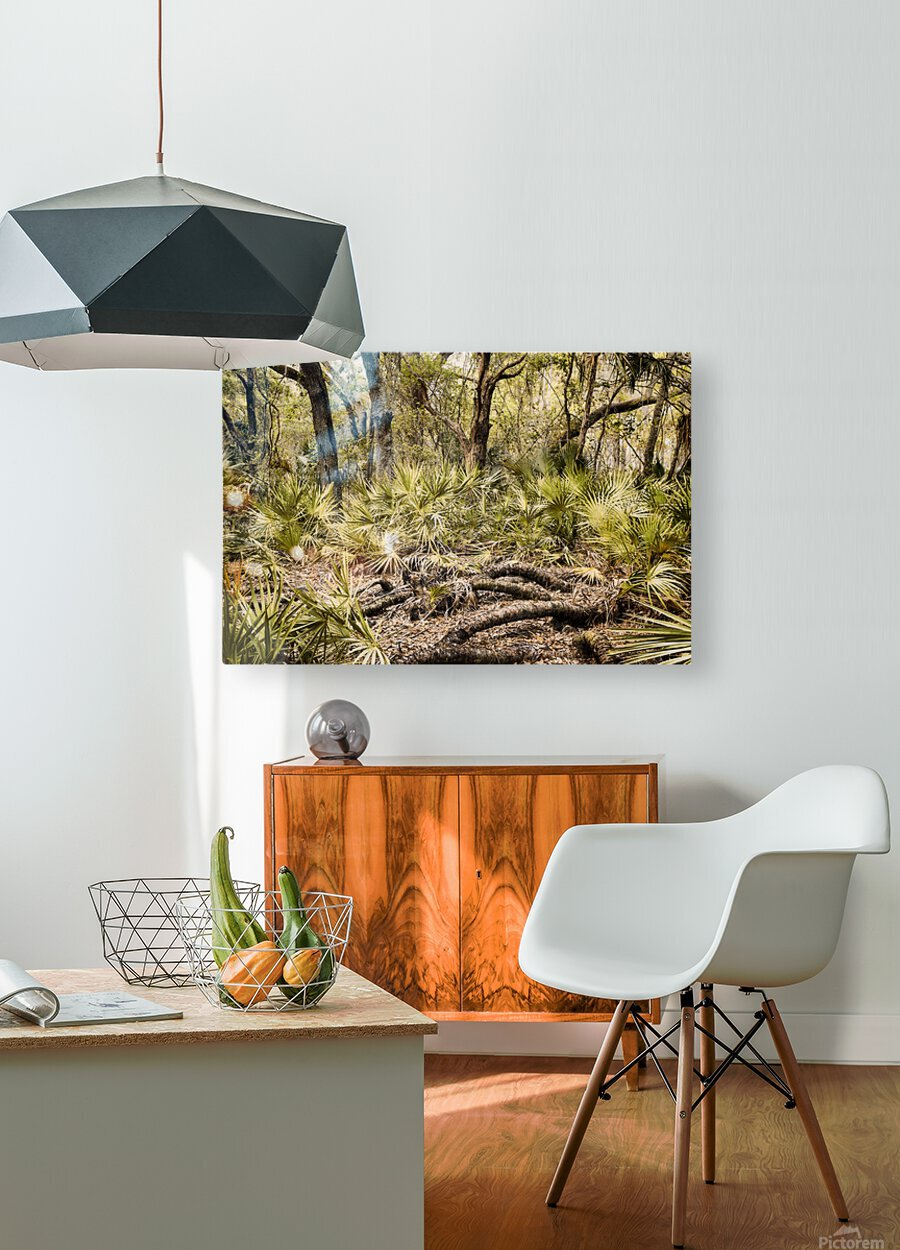 OCA 251  HD Metal print with Floating Frame on Back