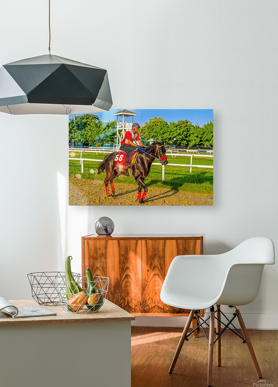 Racehorse01  HD Metal print with Floating Frame on Back
