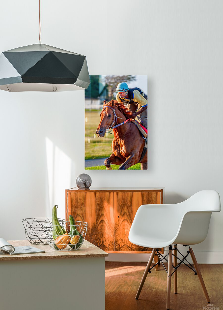 Racehorse11  HD Metal print with Floating Frame on Back