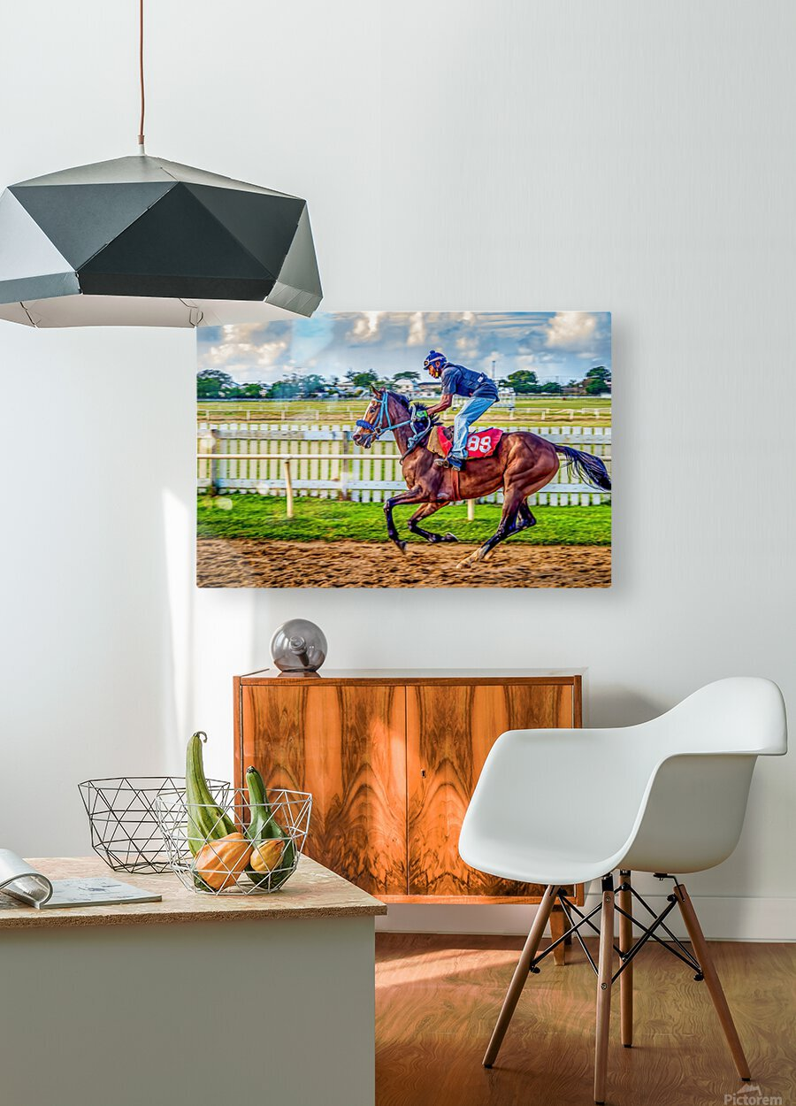 Racehorse09  HD Metal print with Floating Frame on Back