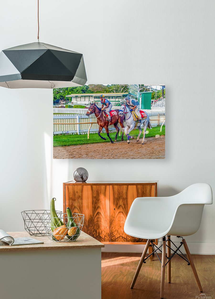 Racehorse07  HD Metal print with Floating Frame on Back