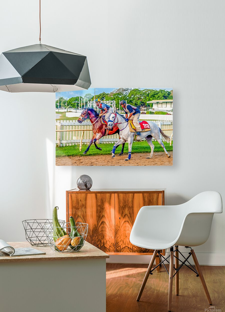 Racehorse08  HD Metal print with Floating Frame on Back