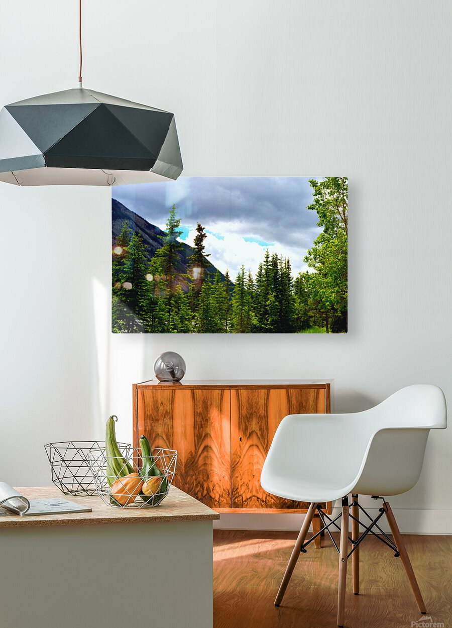 Perspective Approves  HD Metal print with Floating Frame on Back