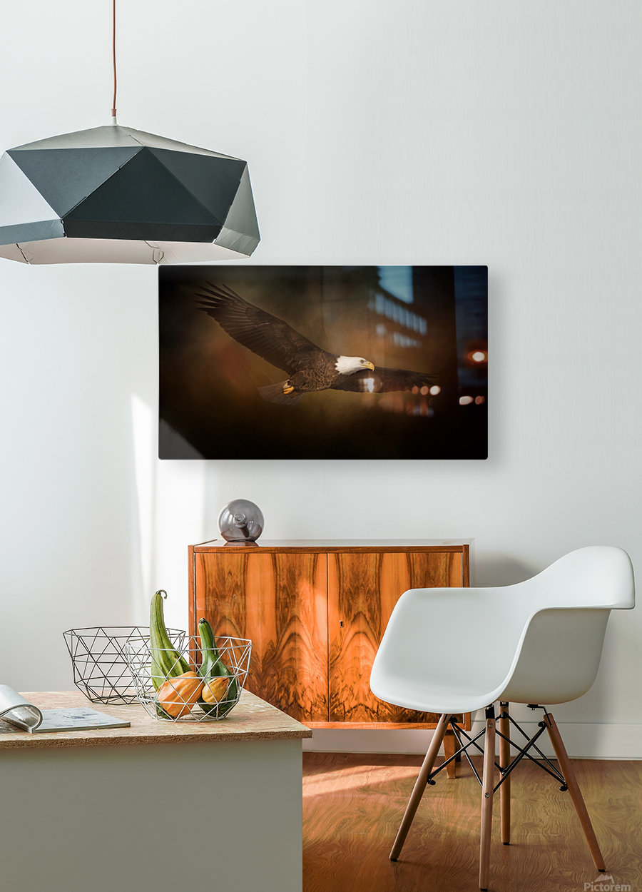 Cruising  HD Metal print with Floating Frame on Back
