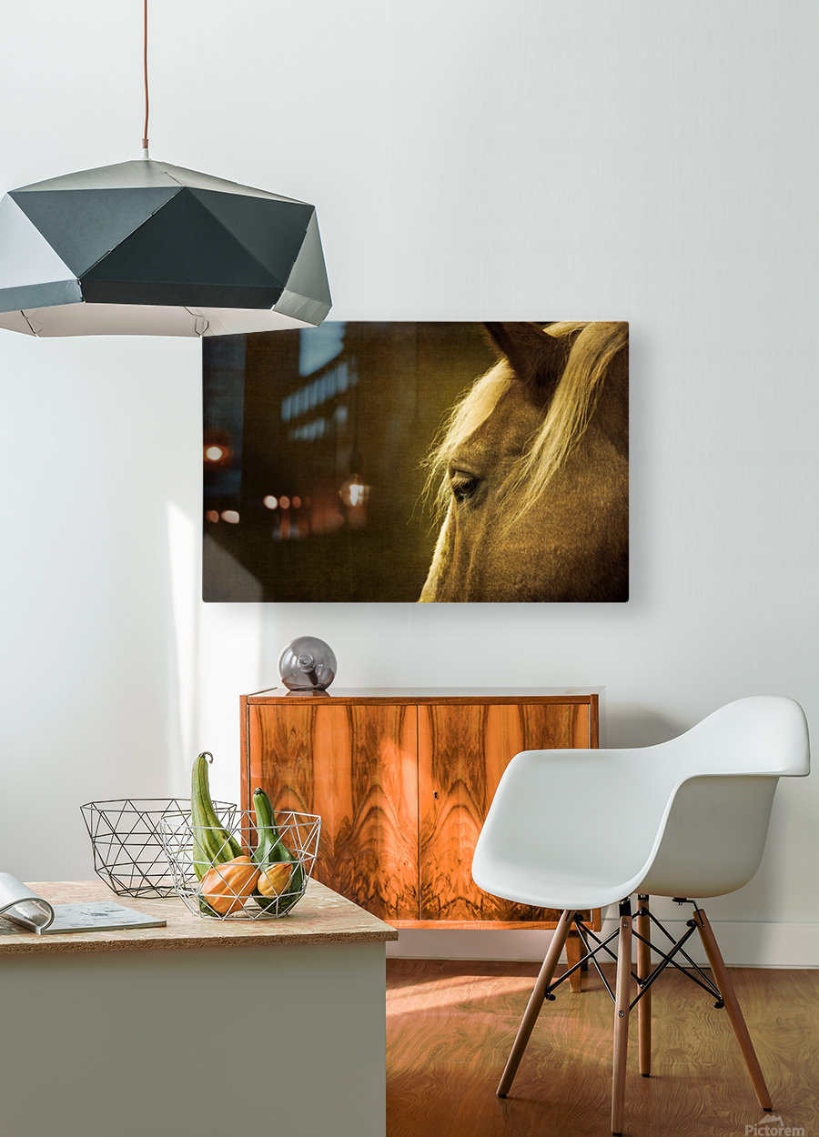 Shy  HD Metal print with Floating Frame on Back