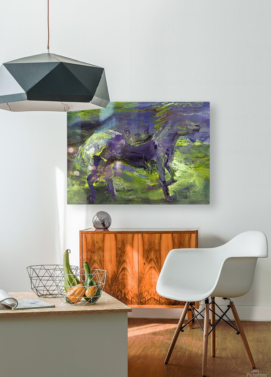 Ghost Rider-  Sage  HD Metal print with Floating Frame on Back