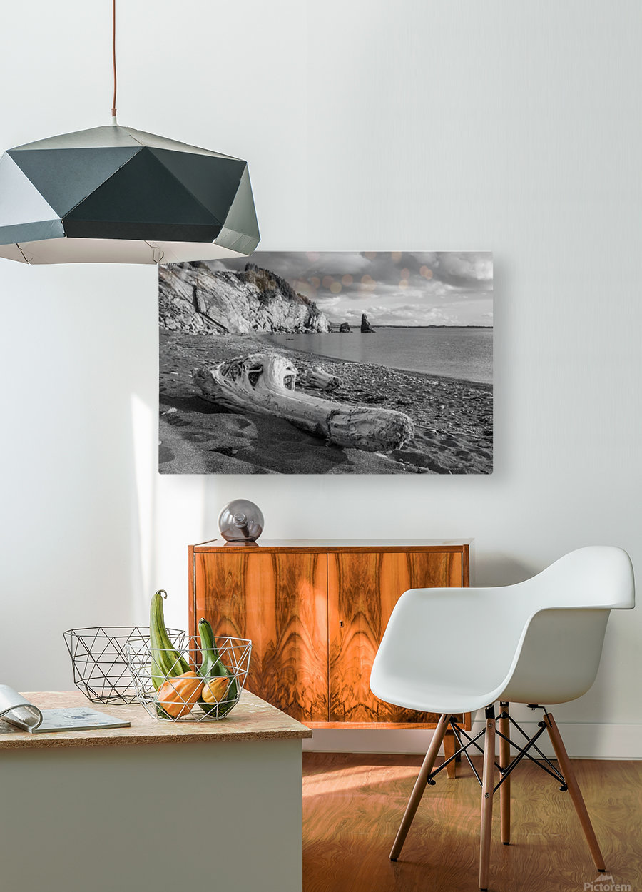 La Presqu'ile in black and white  HD Metal print with Floating Frame on Back