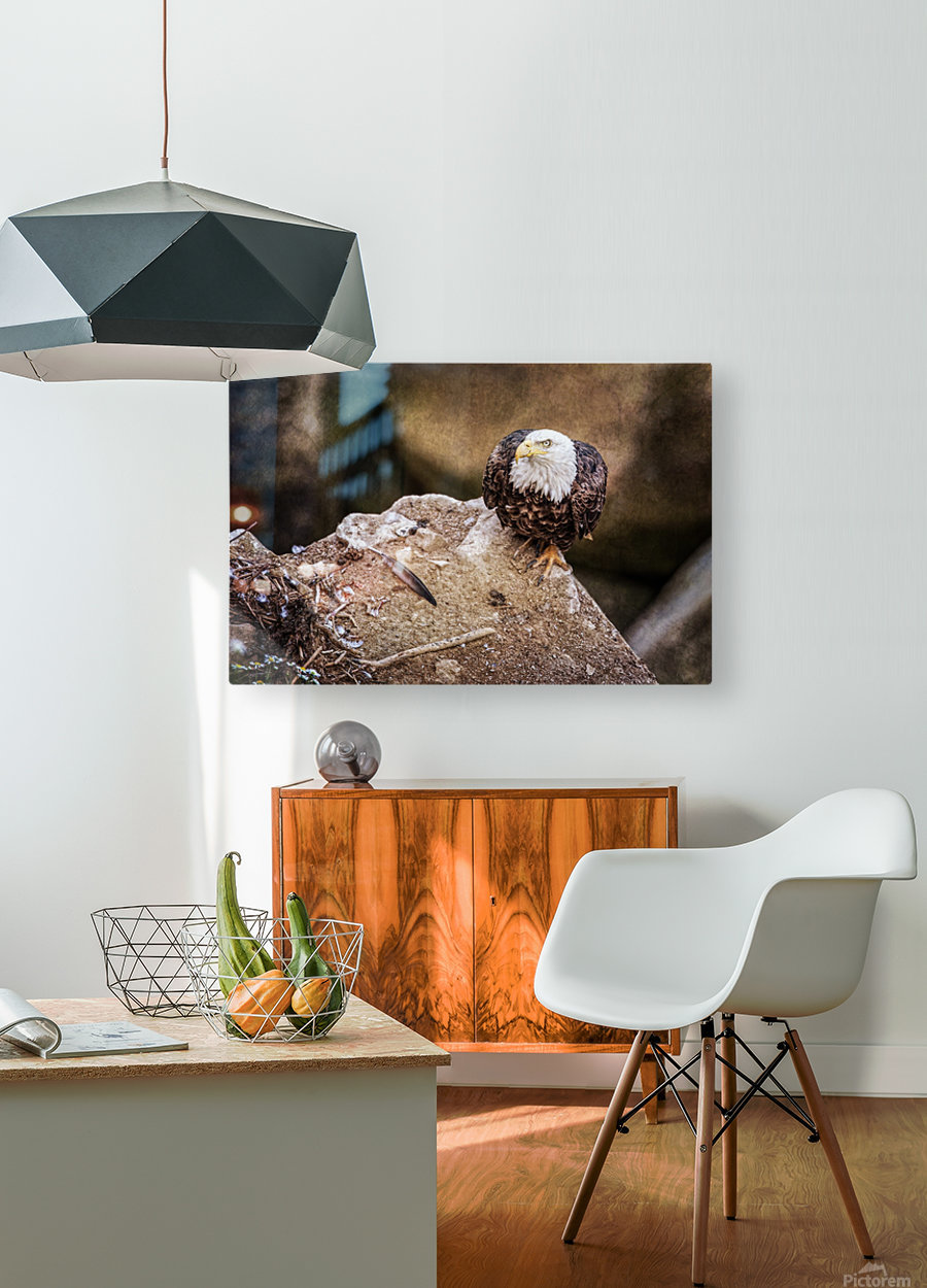 The Last Meal  HD Metal print with Floating Frame on Back
