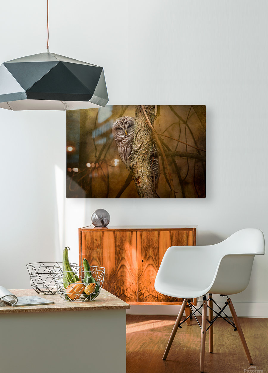 I See You  HD Metal print with Floating Frame on Back