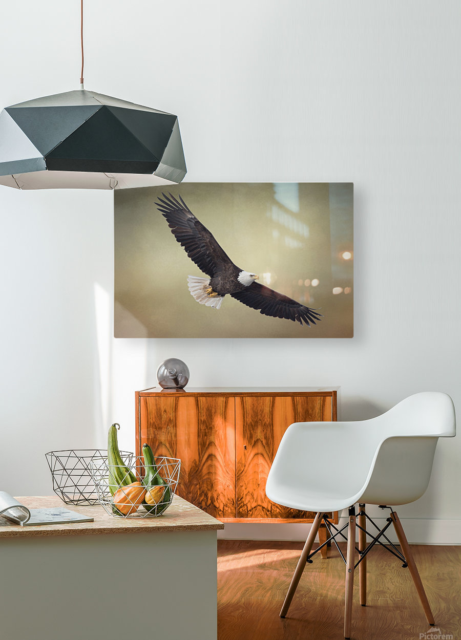 King of the Skies  HD Metal print with Floating Frame on Back