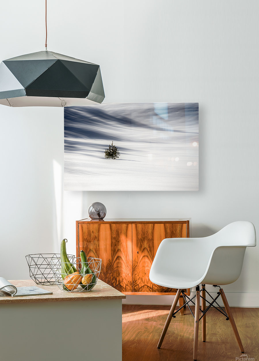 Solitude  HD Metal print with Floating Frame on Back