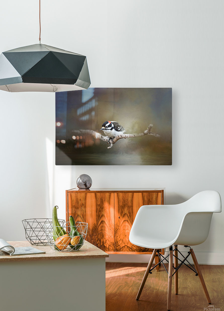Mr Downy  HD Metal print with Floating Frame on Back