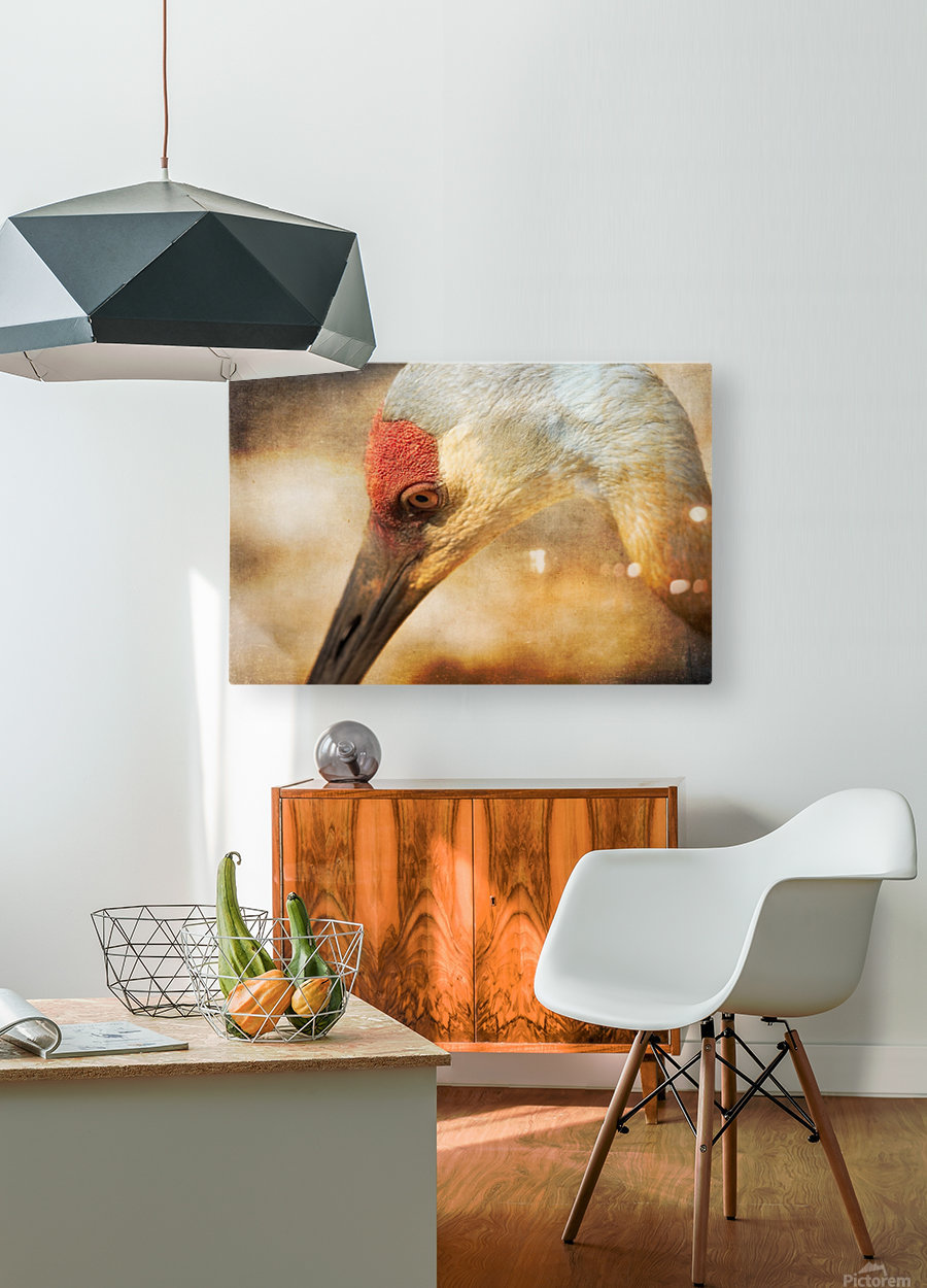 Solace  HD Metal print with Floating Frame on Back