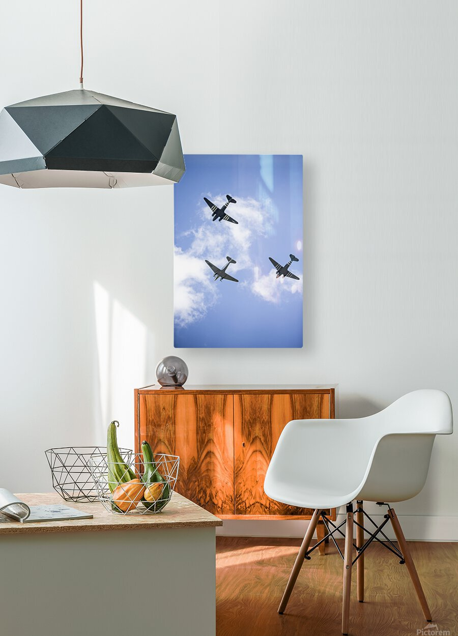 Fly By  HD Metal print with Floating Frame on Back