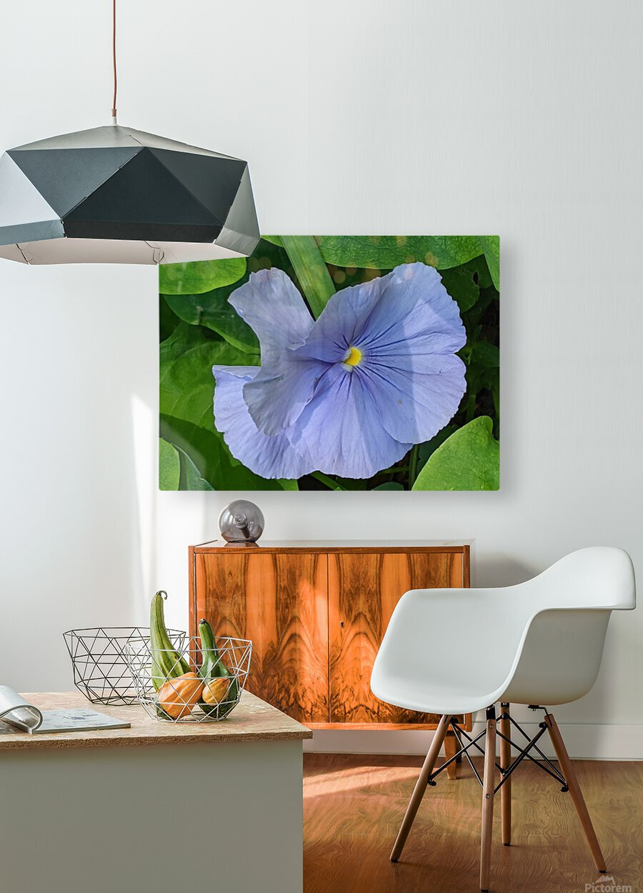 Refreshing Nature  HD Metal print with Floating Frame on Back