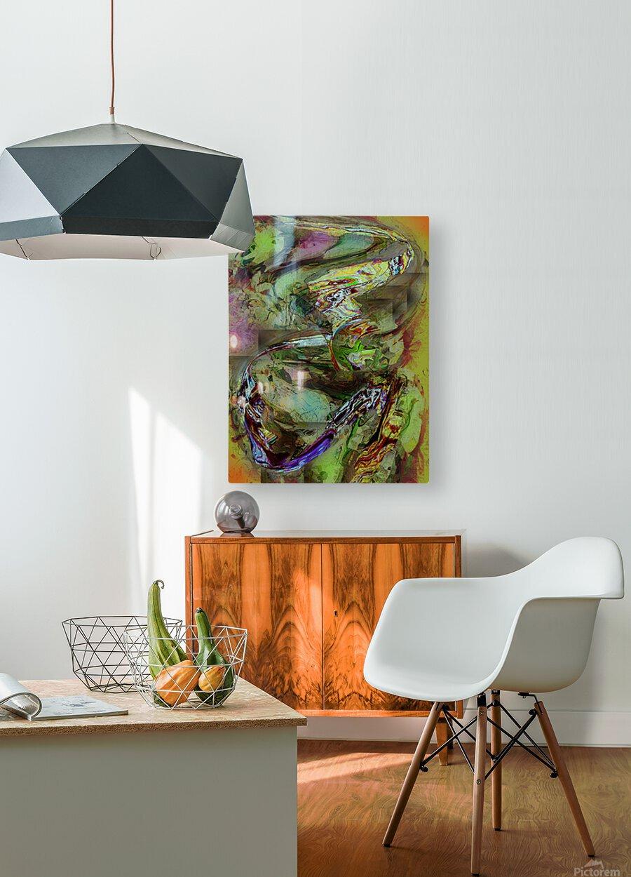 Mandalii  HD Metal print with Floating Frame on Back