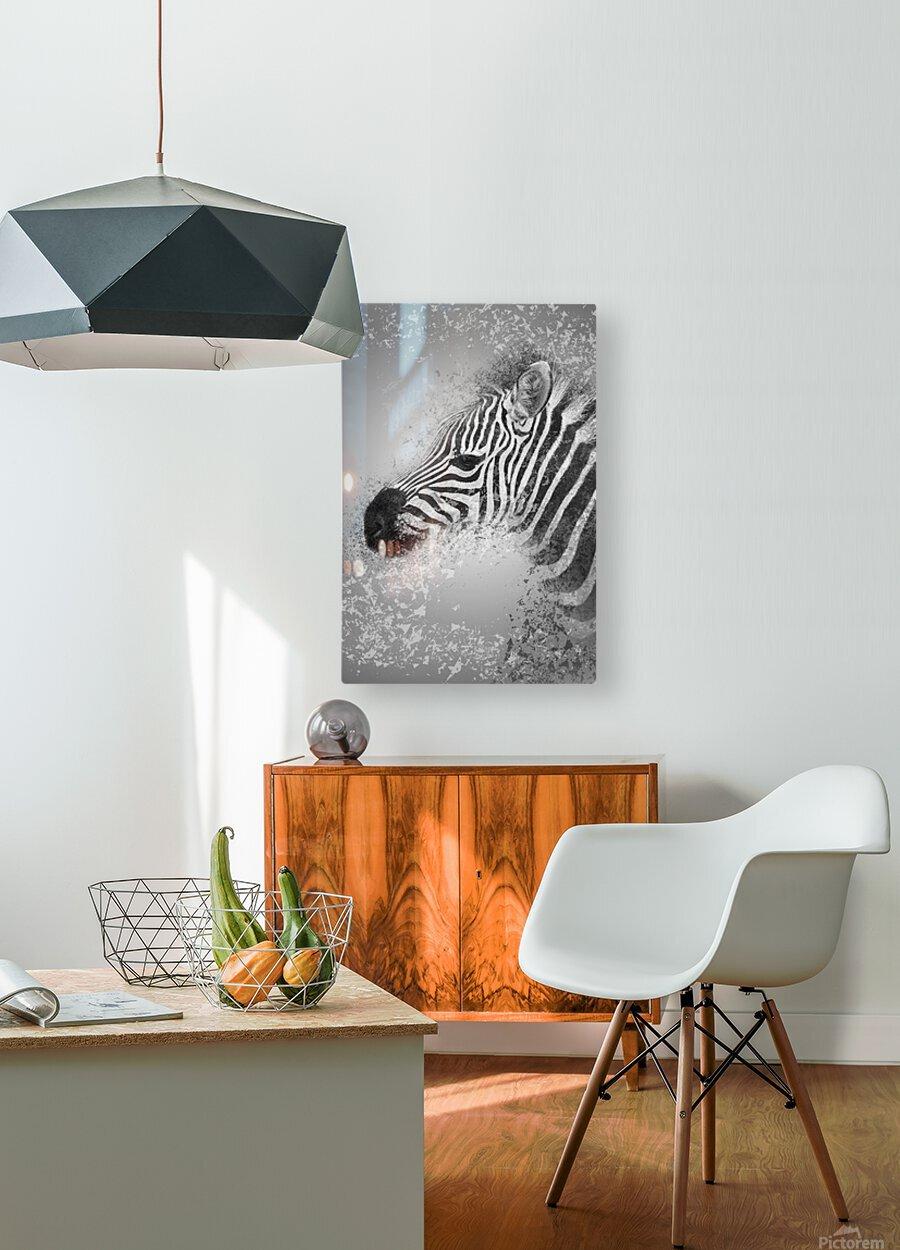 zebre 2  HD Metal print with Floating Frame on Back