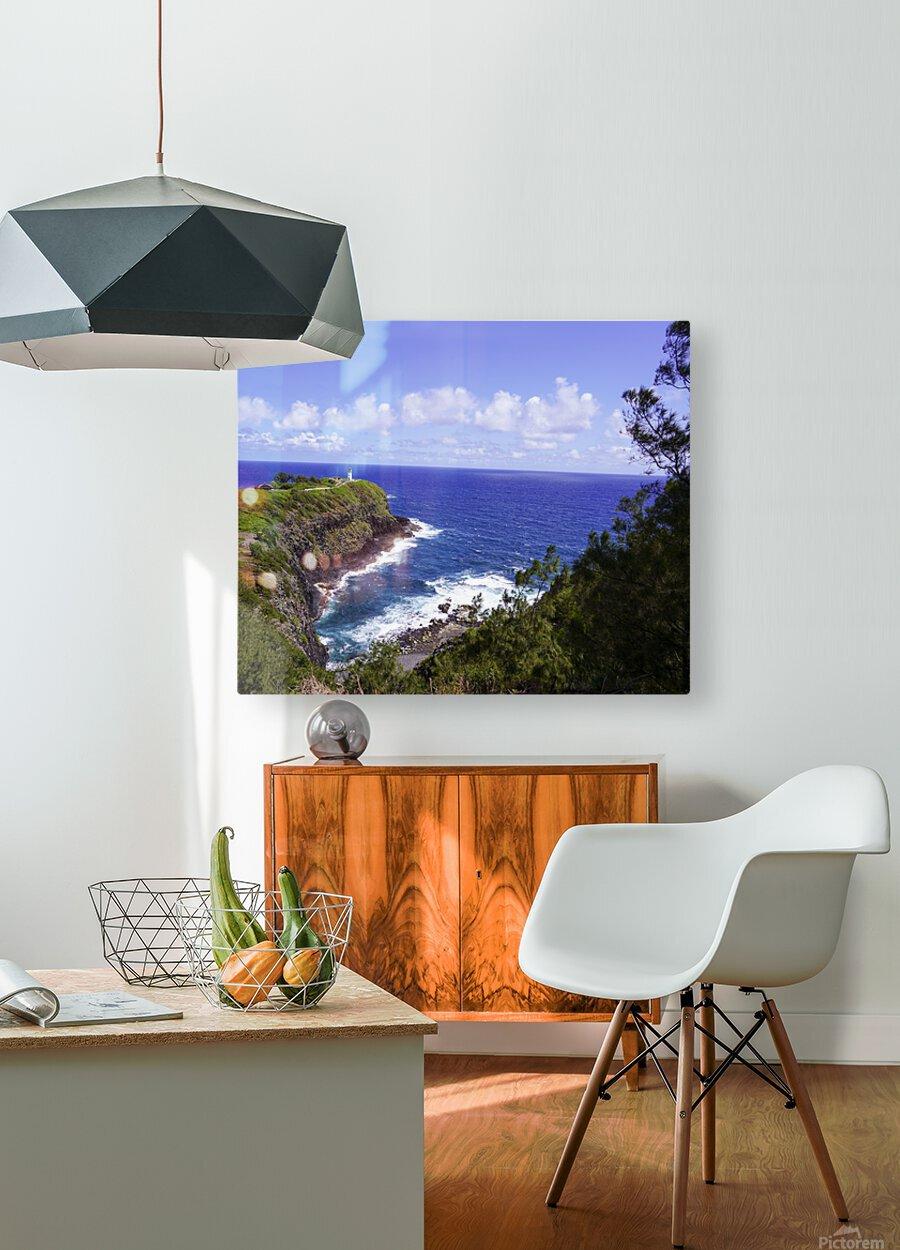 Spring at Kilauea Lighthouse on the Island of Kauai  HD Metal print with Floating Frame on Back