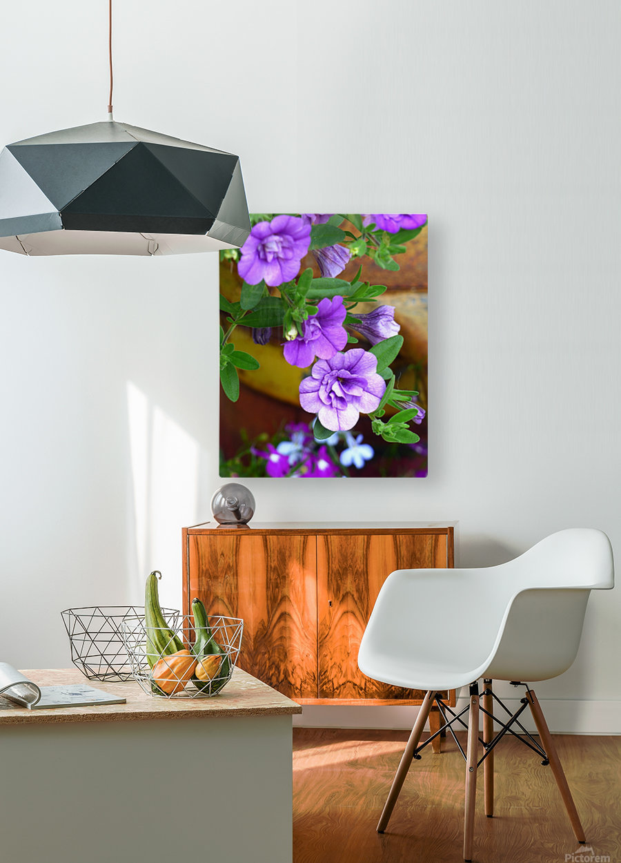 Purple Petals  HD Metal print with Floating Frame on Back