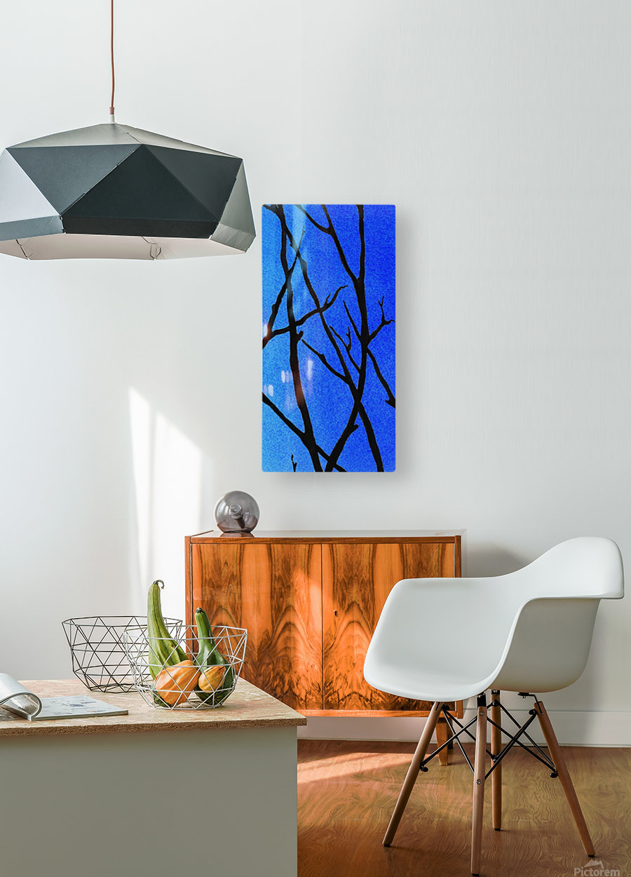 Ultramarine Forest Winter Blues III  HD Metal print with Floating Frame on Back