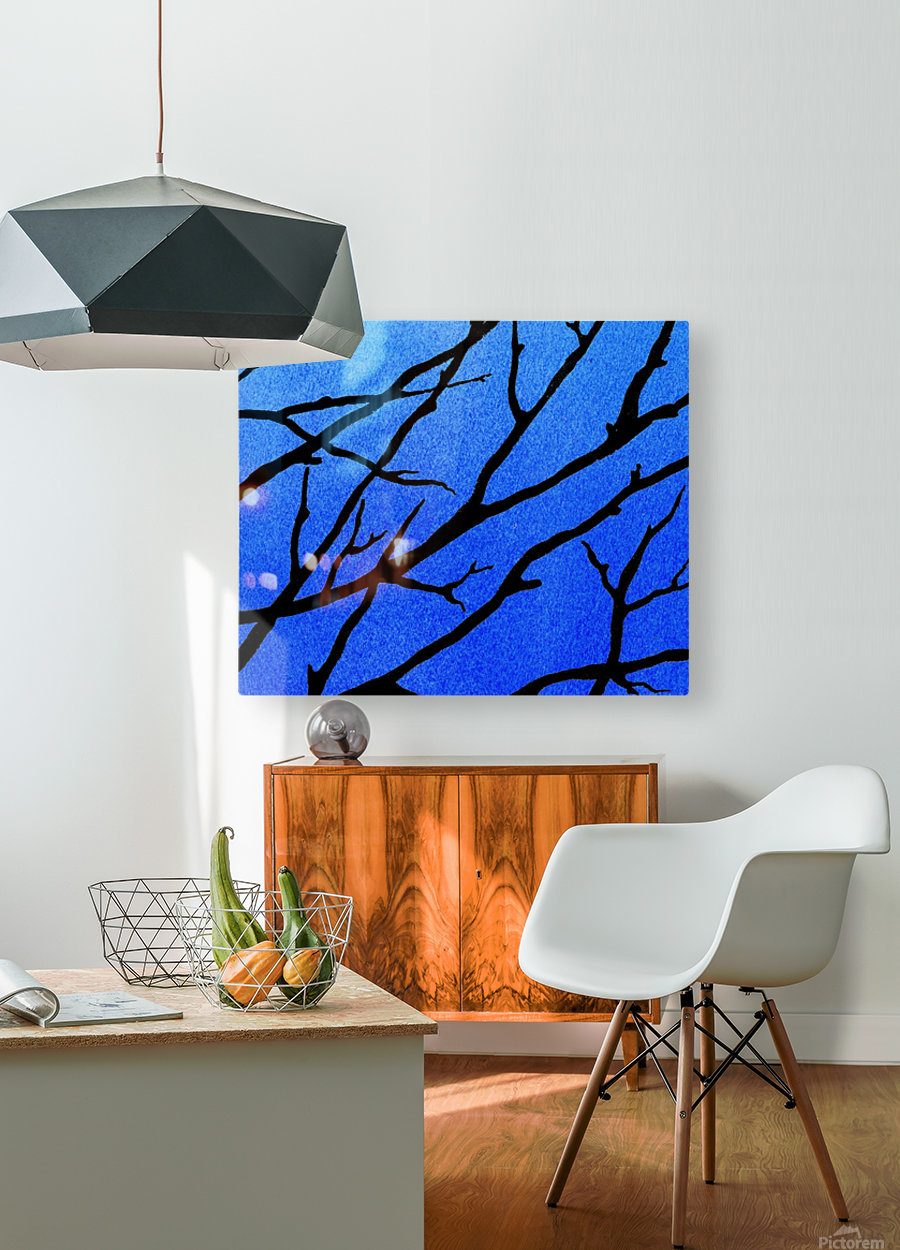 Ultramarine Forest Winter Blues II  HD Metal print with Floating Frame on Back