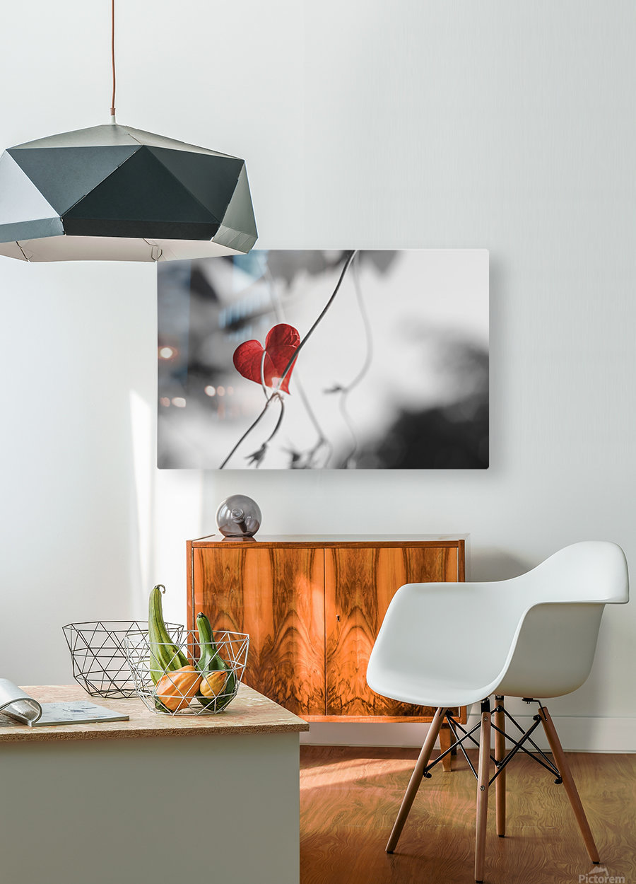 Red heart shaped leaf  HD Metal print with Floating Frame on Back