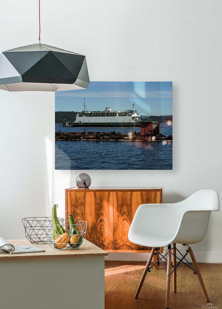 Baynes Sound  HD Metal print with Floating Frame on Back