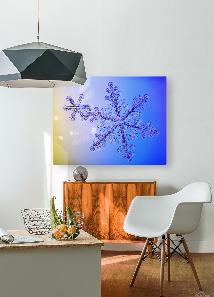Photomicroscopic close up of two snowflake crystals, Alaska  HD Metal print with Floating Frame on Back
