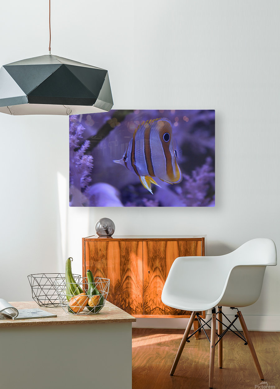 stripes  HD Metal print with Floating Frame on Back