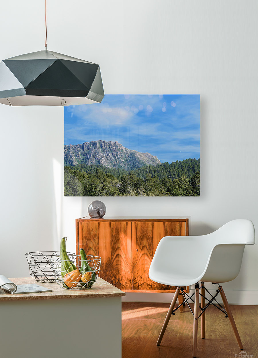 Senic  HD Metal print with Floating Frame on Back