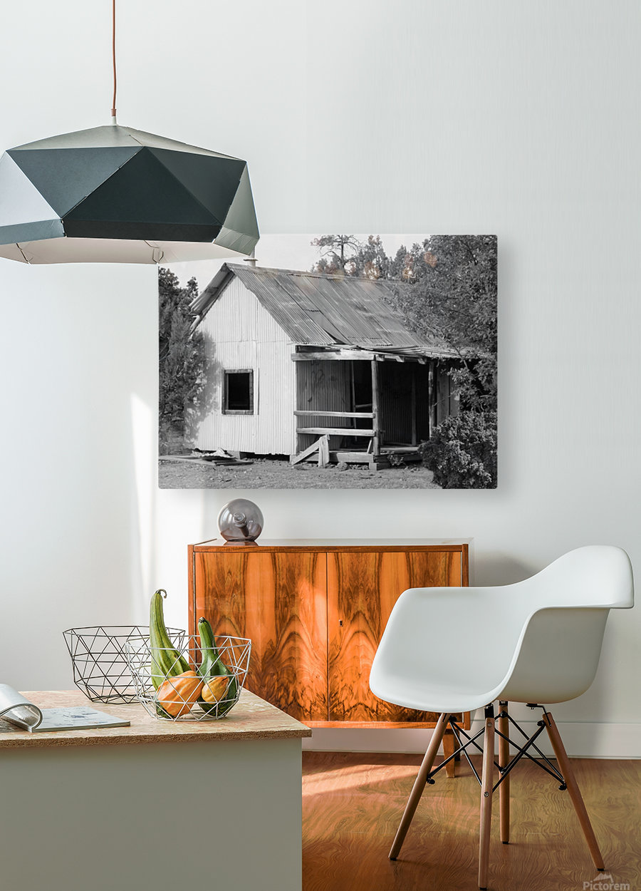 Old Miners Shack  HD Metal print with Floating Frame on Back