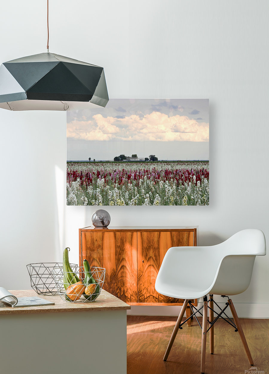 A Perfect Day  HD Metal print with Floating Frame on Back