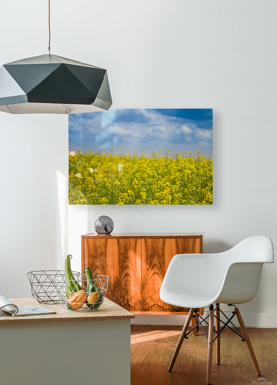 Summer flowers  HD Metal print with Floating Frame on Back