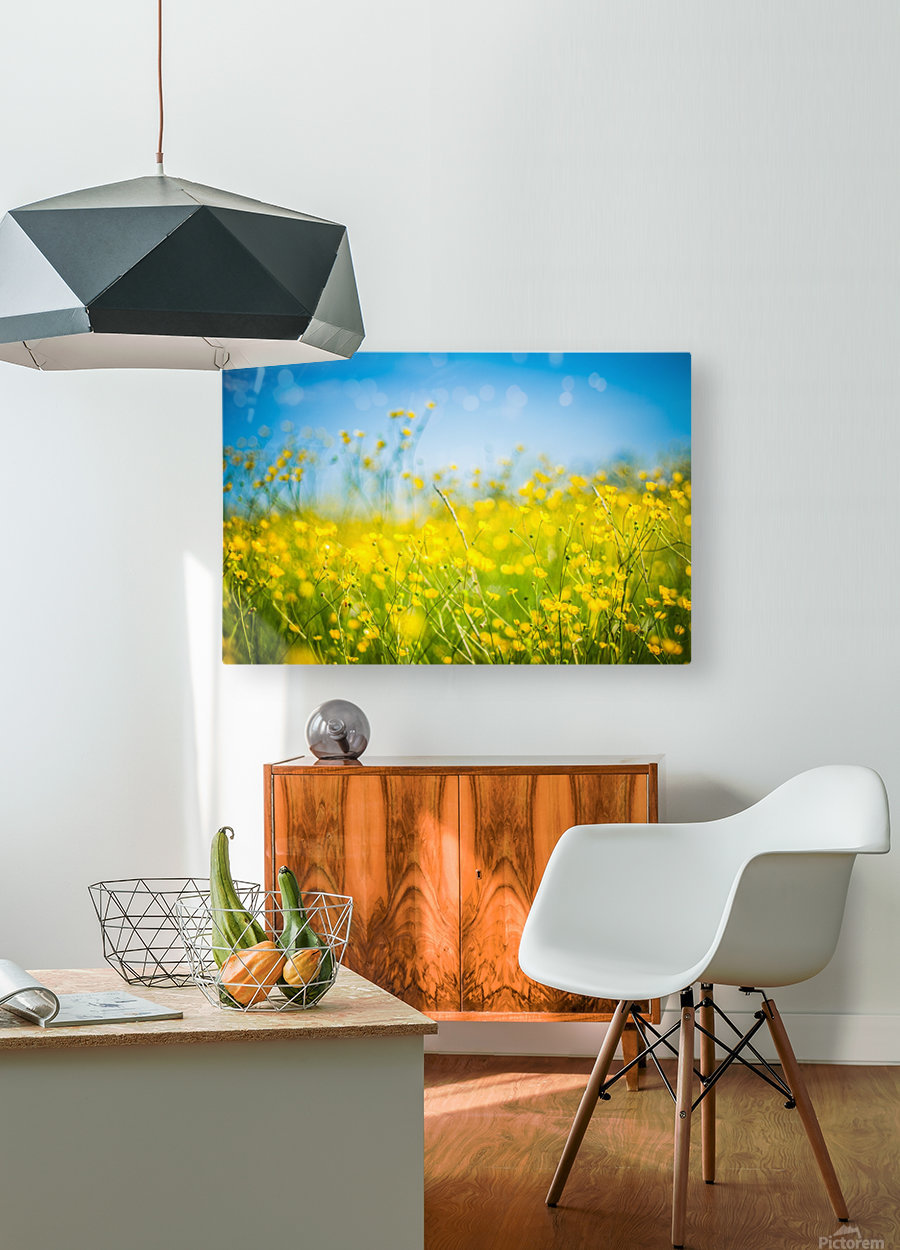 Summer flowers, yellow and blue  HD Metal print with Floating Frame on Back