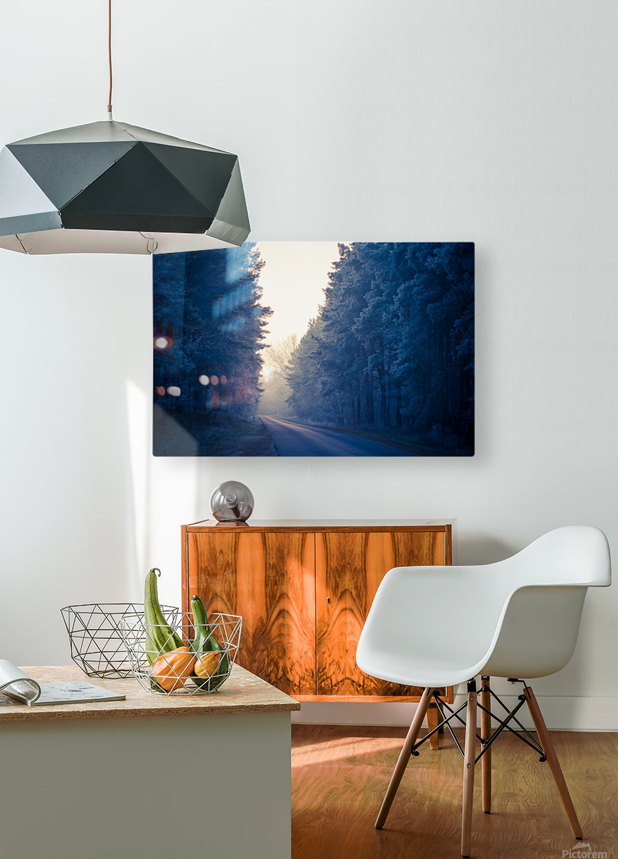 Winter road  HD Metal print with Floating Frame on Back