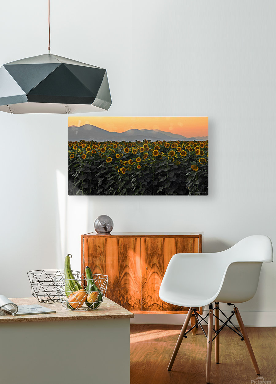 Standing Room Only  HD Metal print with Floating Frame on Back