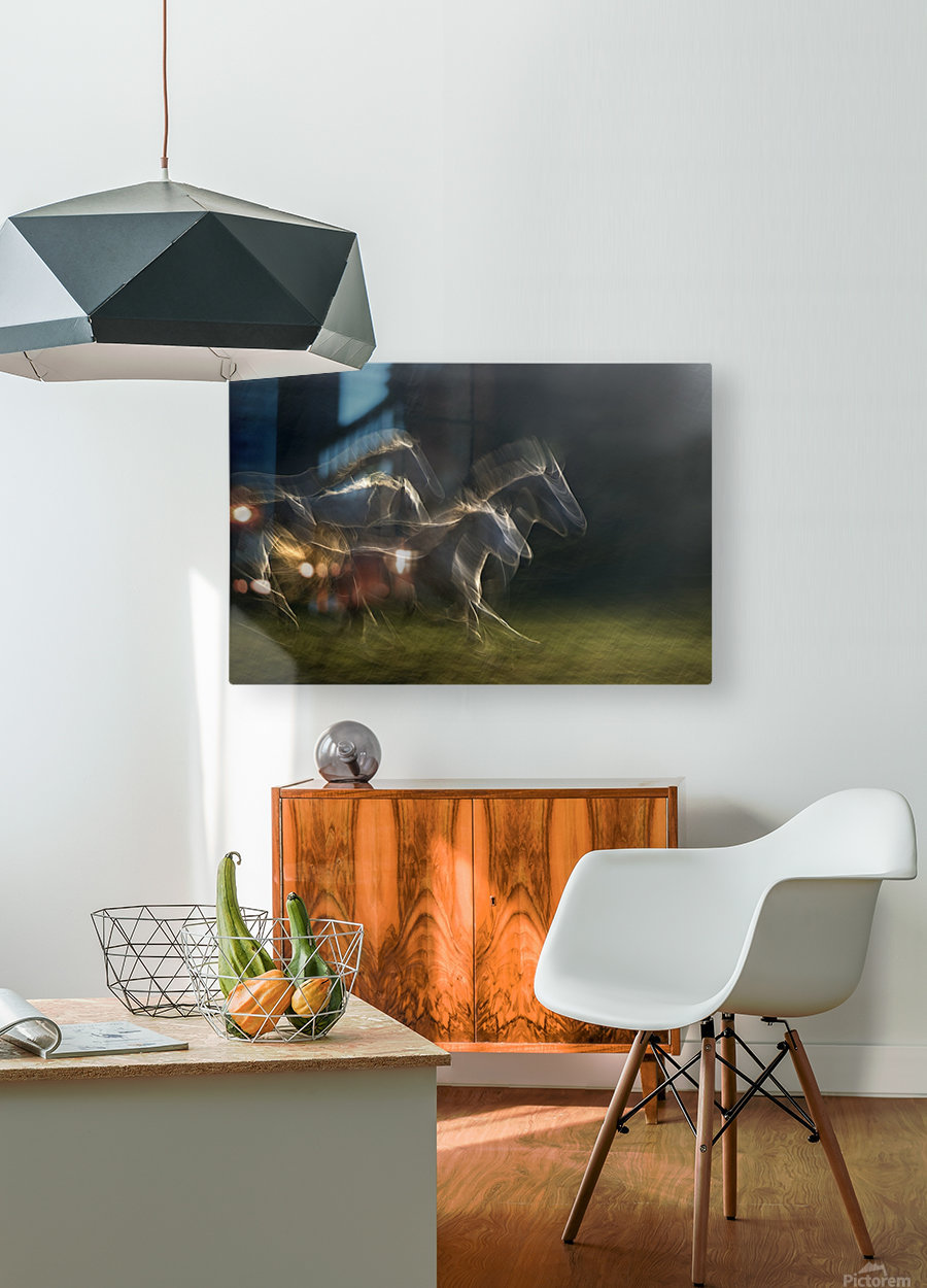 echoing in motion  HD Metal print with Floating Frame on Back
