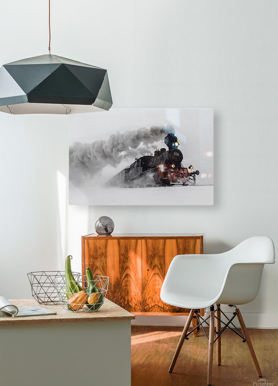 Little-Jumbo  HD Metal print with Floating Frame on Back