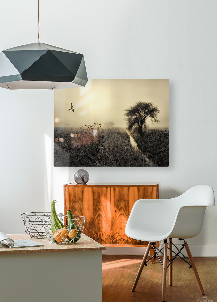 Morning mood  HD Metal print with Floating Frame on Back