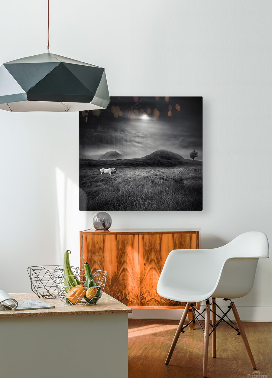 Strange Place To Be  HD Metal print with Floating Frame on Back