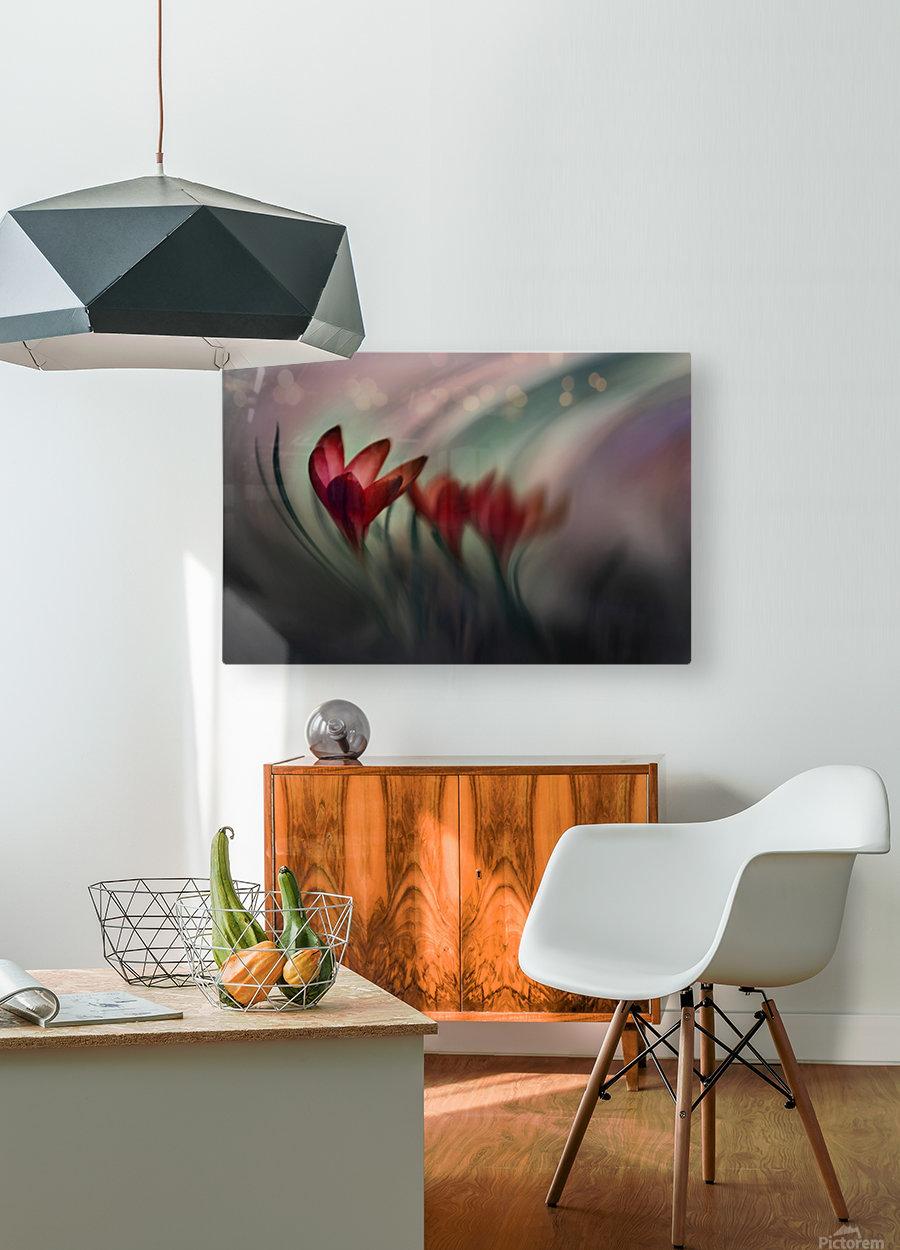 Krokus  HD Metal print with Floating Frame on Back