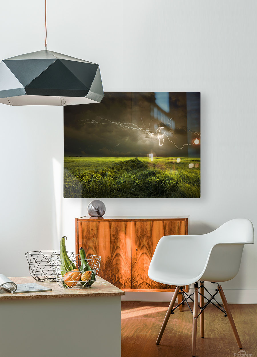 Electrically in Summer  HD Metal print with Floating Frame on Back