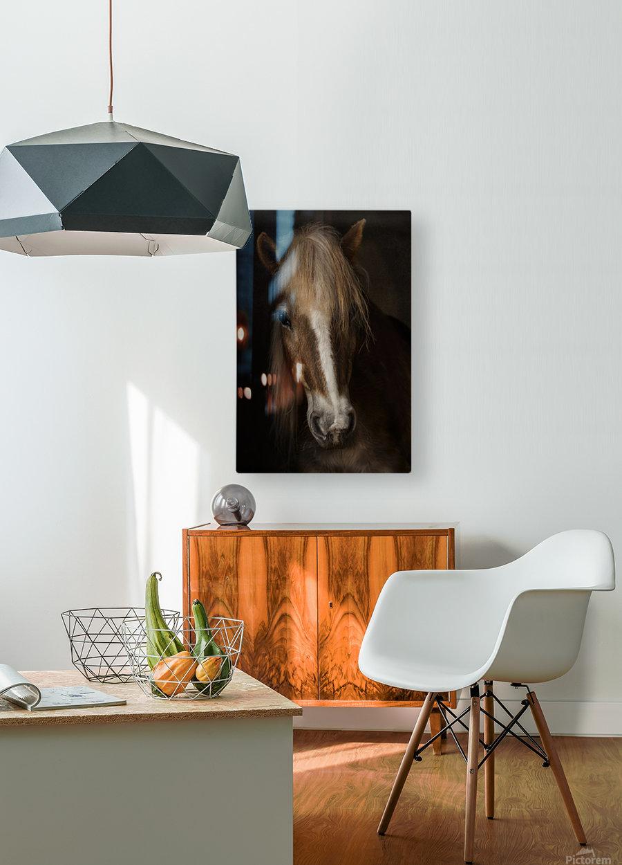Sapience  HD Metal print with Floating Frame on Back
