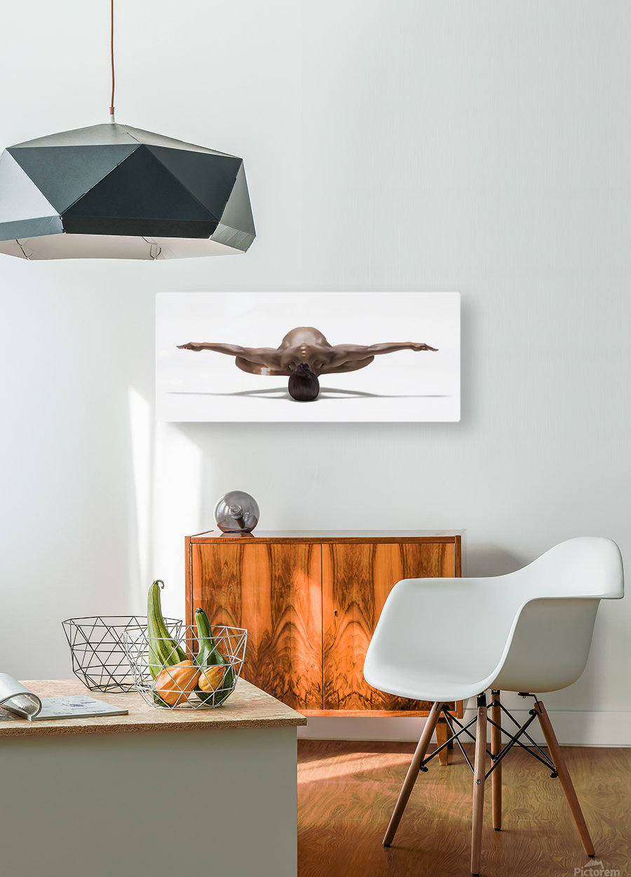 Perfect Balance  HD Metal print with Floating Frame on Back