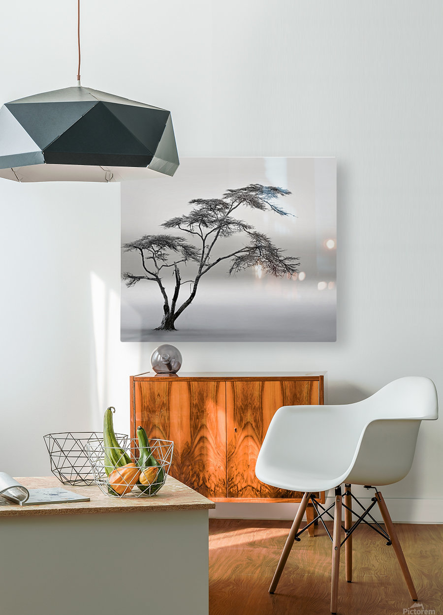 a very long story  HD Metal print with Floating Frame on Back