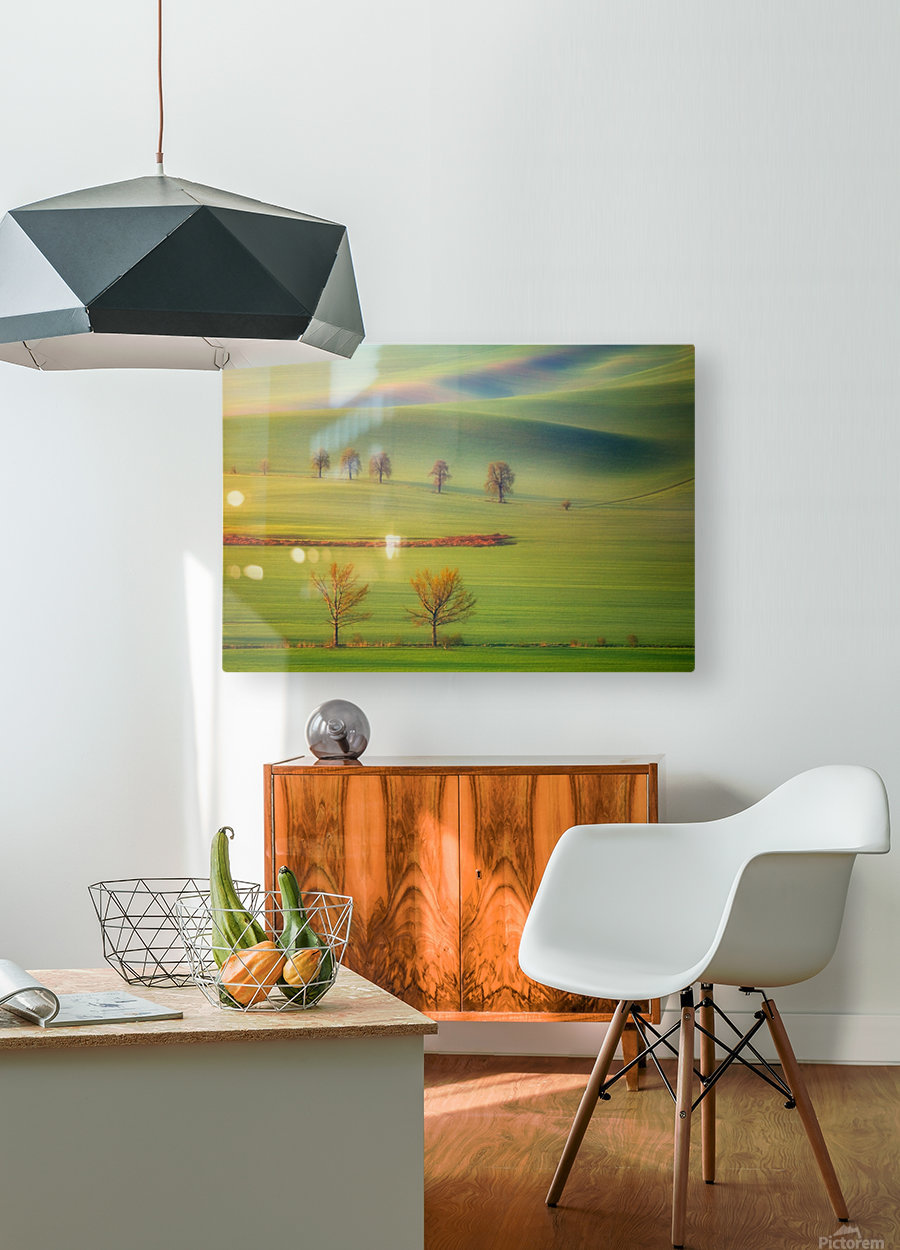 Fields  HD Metal print with Floating Frame on Back