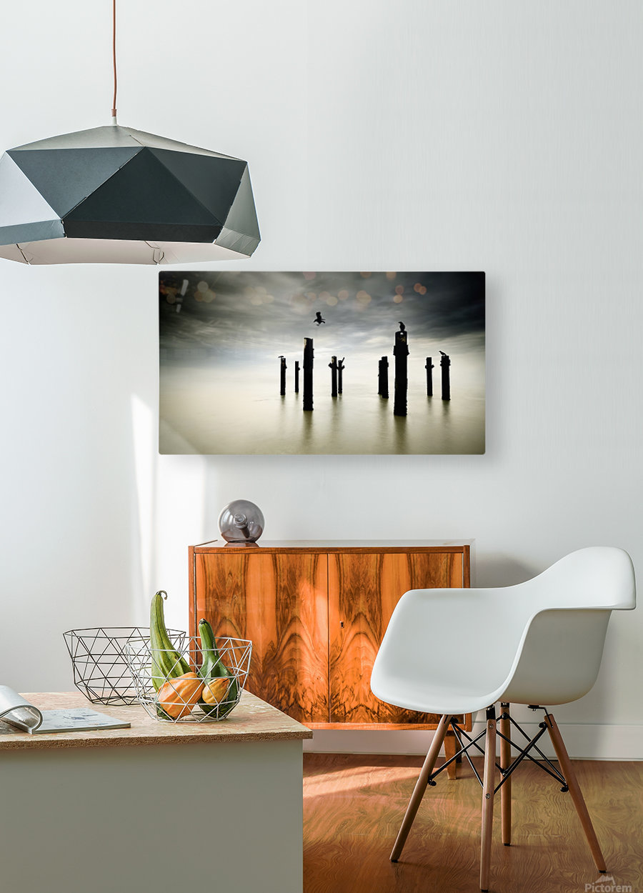 The Sentinels  HD Metal print with Floating Frame on Back