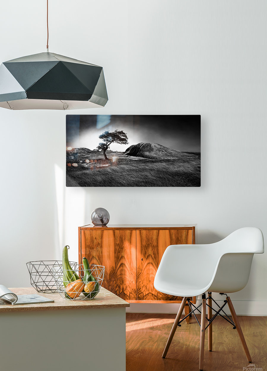 Winter is coming  HD Metal print with Floating Frame on Back