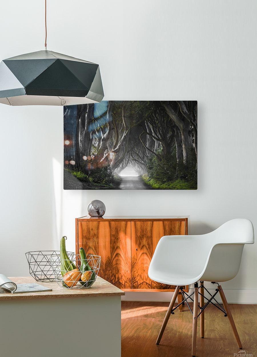 DARK HEDGES  HD Metal print with Floating Frame on Back